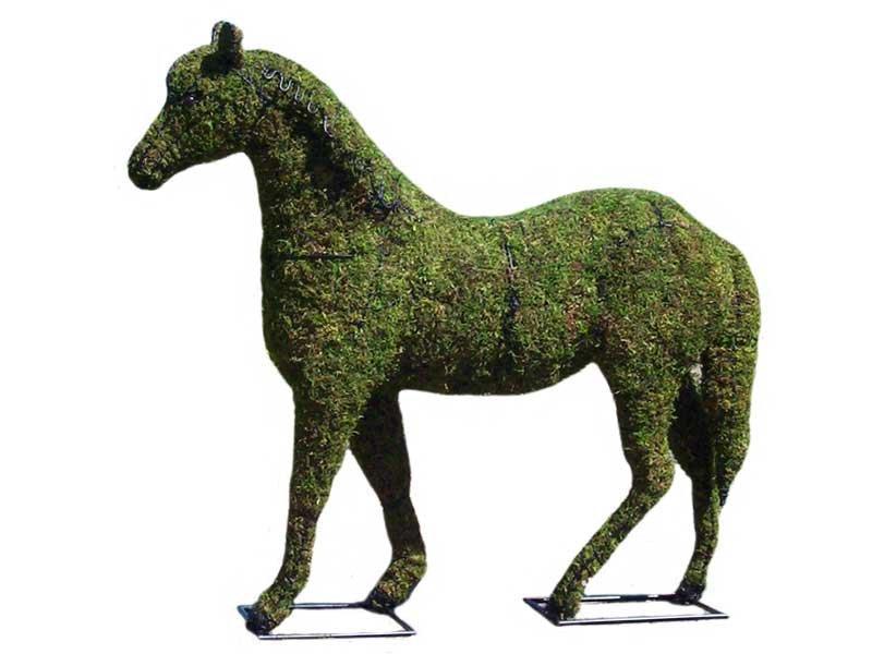 horsemossedlrg.jpg