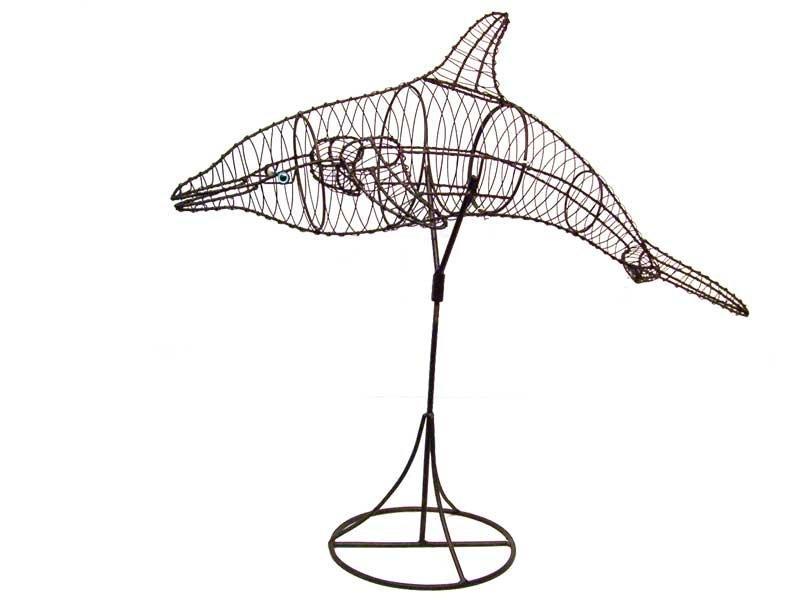 dolphinframelrg.jpg