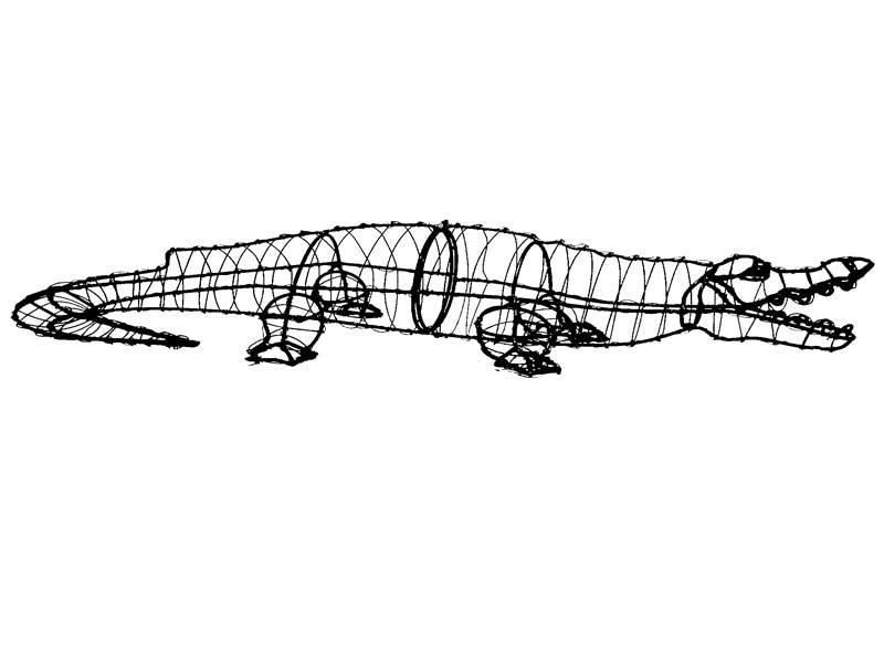 alligatorframelrg
