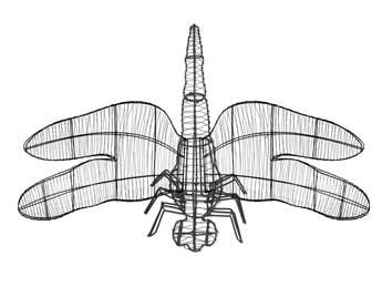 dragonflyframemd