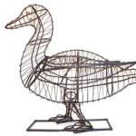 duckframemd