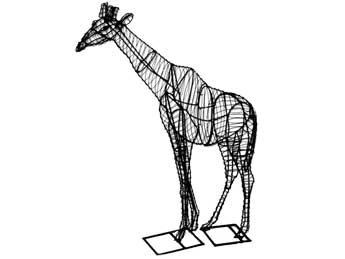 giraffeframemd
