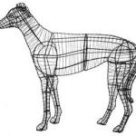 greyhoundframemd
