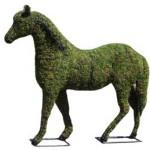 horsemossedmd