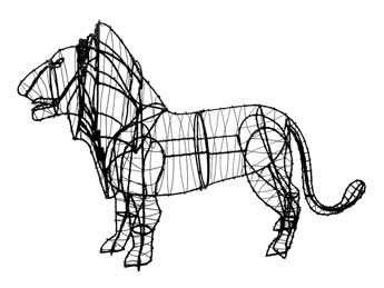 lionframemd